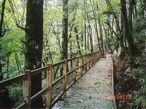 大菩薩自然観察歩道