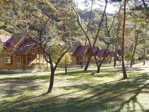 下北山キャンプ場