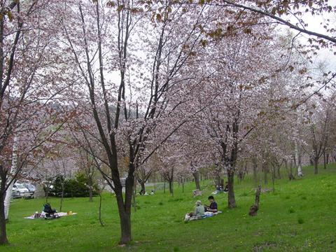 旭が丘公園