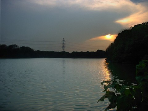 府営公園(山田池公園)