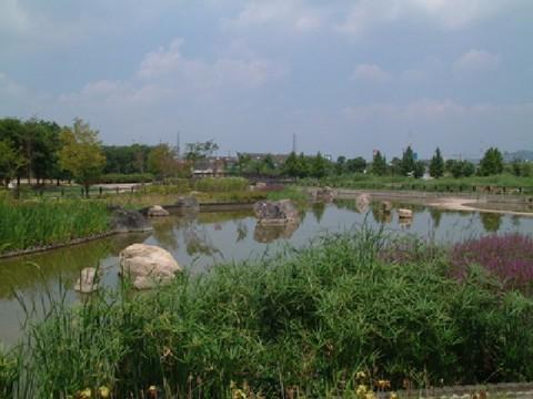 府営公園(深北緑地)