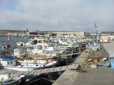 Sakai  fishery harbor