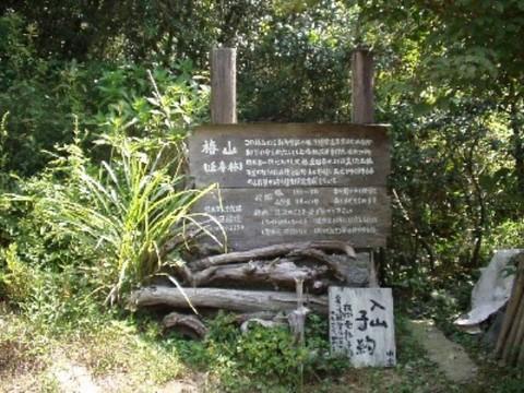 Tubaki-yama