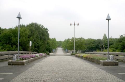 府営公園(久宝寺緑地)