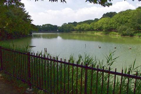府営公園(服部緑地)