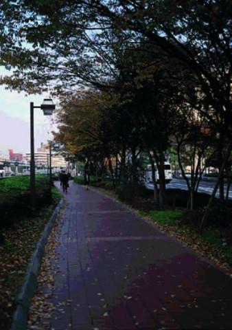 Nakanoshima  alameda