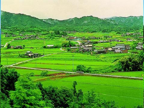 No.1 Farm Scenery in Japan