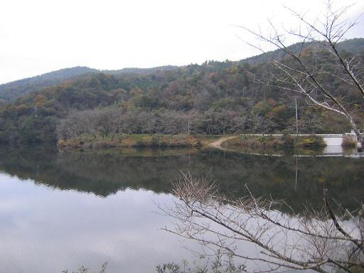 桜の名所でもある山中の池