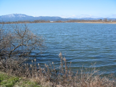 松ノ木内湖