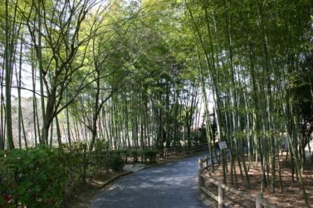 琵琶湖文化公園