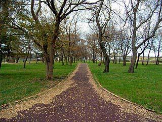 河川敷も近い公園