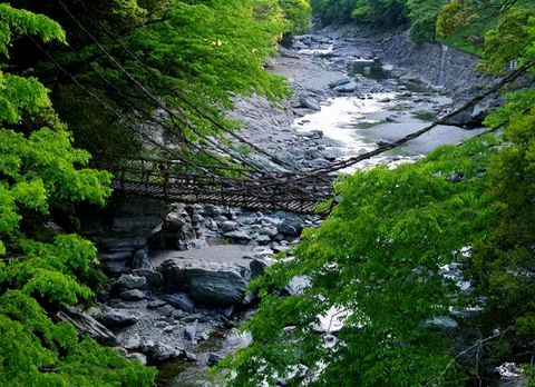 Vine Bridges in the Iya Valley