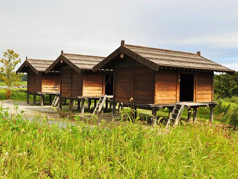 Kokumotsukura.Fujiwara Heritage Park
