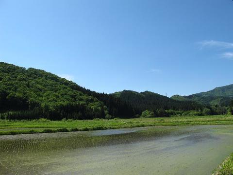 野田地区田園風景