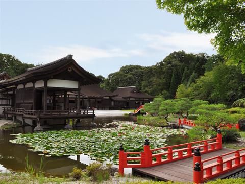 Kyara Gosho. Fujiwara Heritage Park