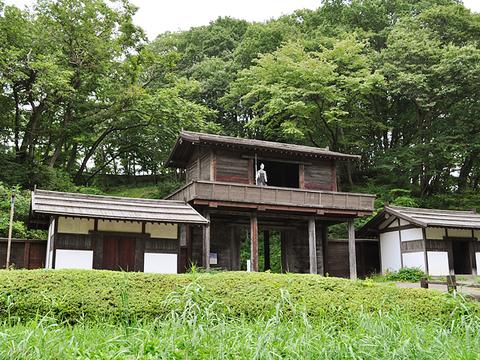 Johsaku-palisade. Fujiwara Heritage Park