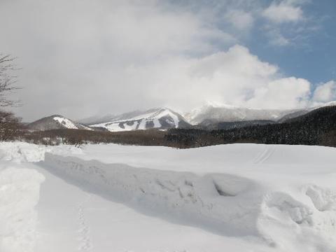 サボーカルチャーパーク 冬