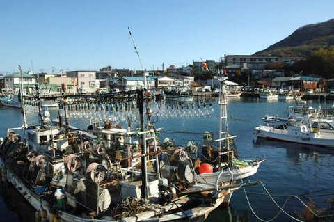 Hakodate Fishing Port