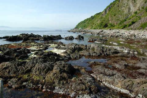 Anama Shoreline