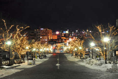 Hakodate Winter Lights