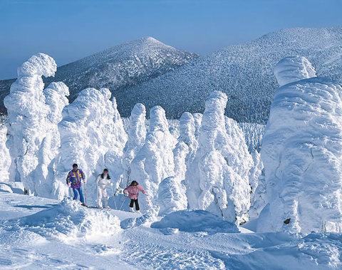 Crystallized Frost on Trees in Miyagi-Zao