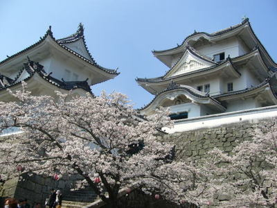 ueno castle