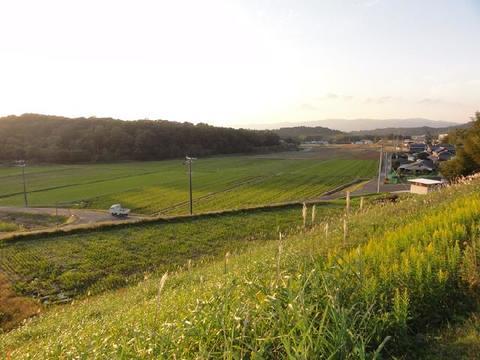 田園風景(上友生)