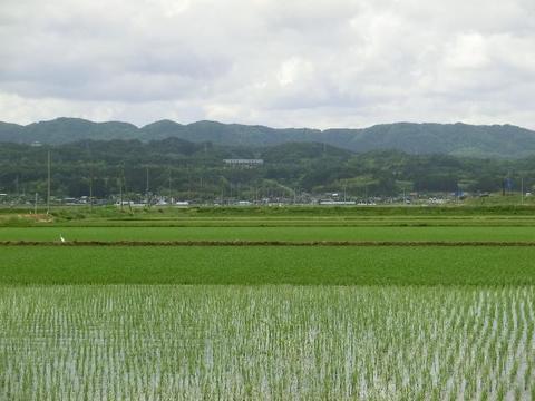田園風景(仙台館腰線沿い)