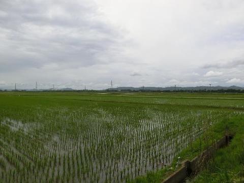 田園風景(名取市本郷地区)