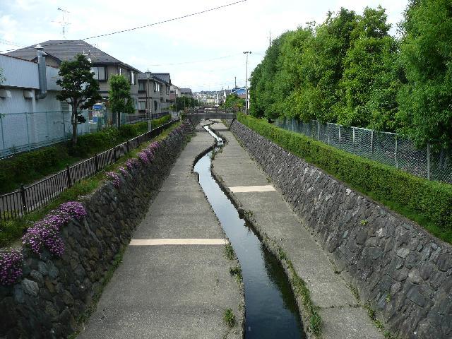 野田の玉川(おもわくの橋)