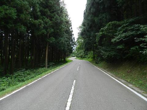姫神公園・山道