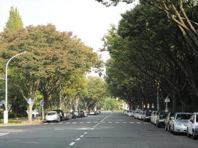 名古屋市中区三の丸周辺