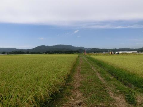 田園風景(丸森町舘矢間)