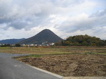 讃岐富士と田んぼ