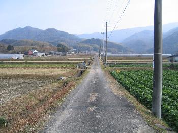 木熊野神社付近の田園風景