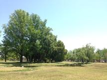 学びの森公園