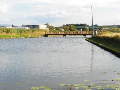 飯田沼釣り公園