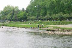 盛岡市内を貫流して北上川に入る。白鳥が飛来、鮎が泳ぎ、鮭が帰る清流でもある。
