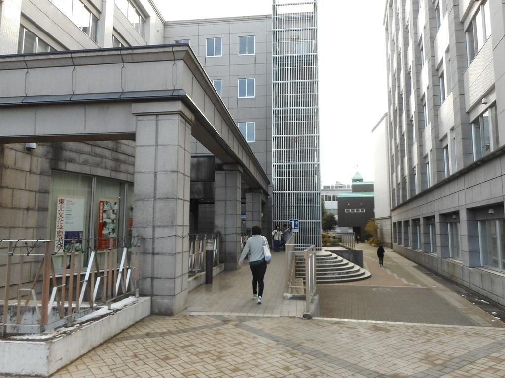 大学 東北 文化 学園