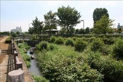 寺之下親水公園