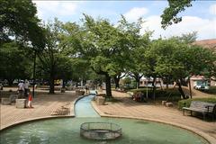谷保第四公園(水路)